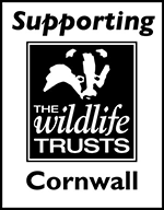 Supporting Cornwall Wildlife Trust